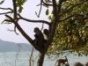 Экскурсия 3 острова